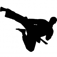 Flying Kick Martial Arts