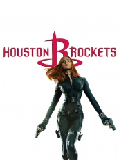 Houston Rockets Black Widow Logo decal sticker