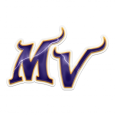 minnesota vikings crystal logo iron on sticker