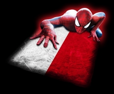 Spiderman POLAND Flag iron on transfer