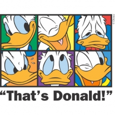 Donald Duck DIY decals stickers version 21