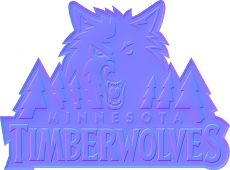 minnesota timberwolves 2009-pres primary colorful embossed logo iron on transfer