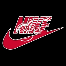 Detroit Red Wings nike logo decal sticker