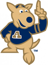 Akron Zips 2002-Pres Mascot Logo decal sticker