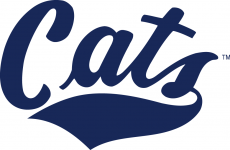 Montana State Bobcats 2004-Pres Wordmark Logo iron on transfer