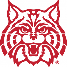 Arizona Wildcats 1990-Pres Secondary Logo 02 decal sticker