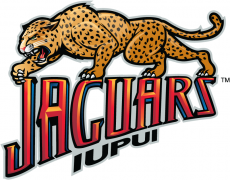 IUPUI Jaguars 2008-Pres Alternate Logo iron on transfer