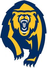 California Golden Bears 2013-Pres Alternate Logo decal sticker