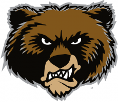 Montana Grizzlies 1996-Pres Alternate Logo 09 decal sticker