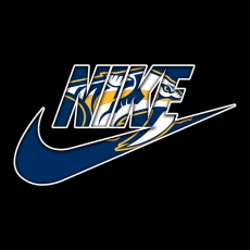 Nashville Predators nike logo iron on sticker