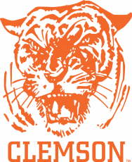 Clemson Tigers 1965-1969 Primary Logo iron on transfer