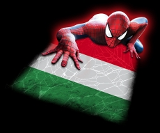 Spiderman ITALY Flag iron on transfer