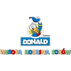 Donald Duck DIY decals stickers version 3