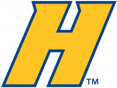 Hofstra Pride 2005-Pres Alternate Logo 01 iron on transfer