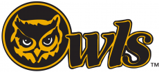 Kennesaw State Owls1992-2011 Primary Logo iron on transfer