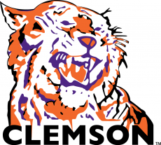 Clemson Tigers 1970-1976 Primary Logo iron on transfer