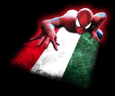 Spiderman HUNGARY Flag iron on transfer