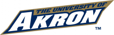 Akron Zips 2002-2007 Wordmark Logo iron on transfer
