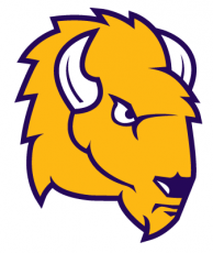 Lipscomb Bisons2012-Pres Secondary Logo iron on transfer