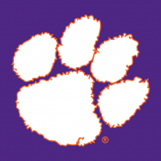 Clemson Tigers 1977-Pres Secondary Logo 05 iron on transfer