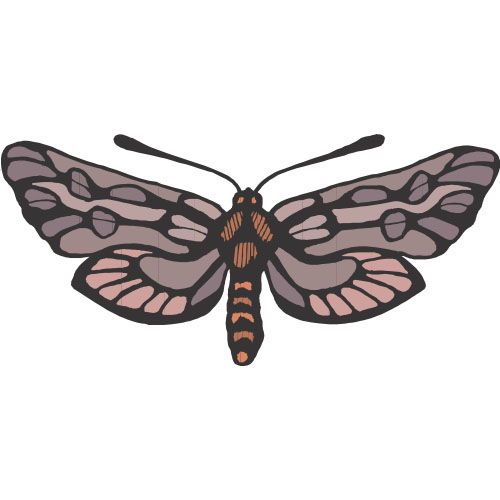 Butterfly DIY decals stickers version 14