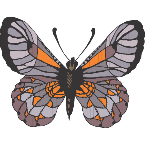 Butterfly DIY decals stickers version 8