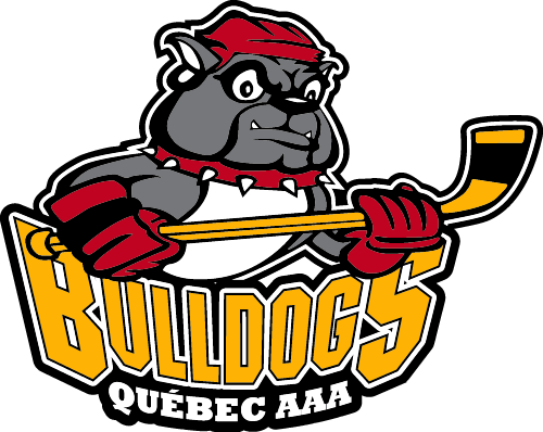 Quebec Bulldogs AAA logo iron on transfer